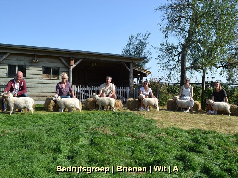 Bedrijfsgroep Brienen Wit